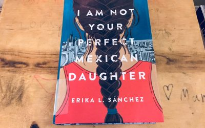 A Fabulous YA Book About the Power of Family